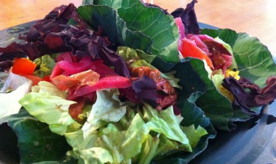 Fiddle Heads, Raw Vegan Cafe & Shop – Worcester, VT