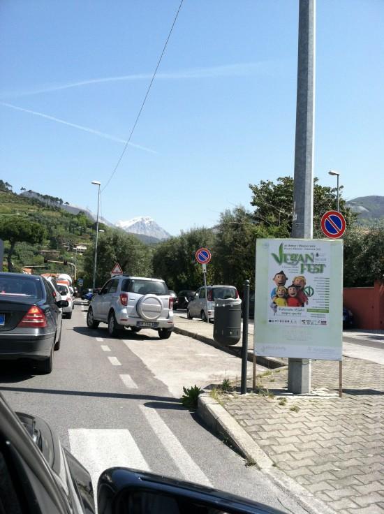 VeganFest 2012 road sign