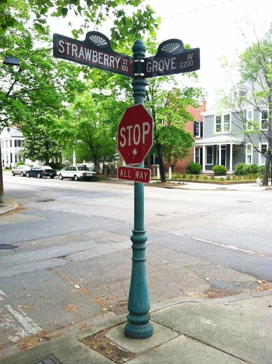 Strawberry Grove - Richmond, VA intersection