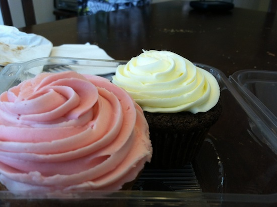 vegan cupcakes from Sweet Surrender in Louisville, KY