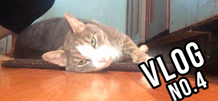 Vedge – Vlog No. 4