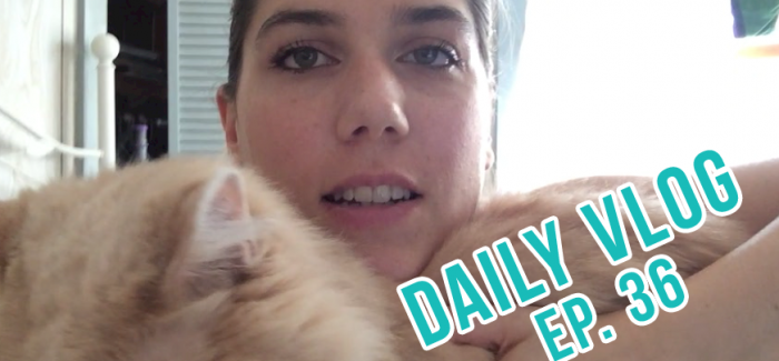 Asking for Help – DAILY Vlog, Ep. 36
