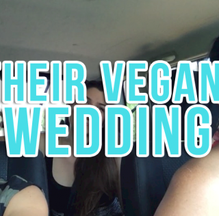 Their Vegan Wedding – DAILY Vlog, Ep. 46