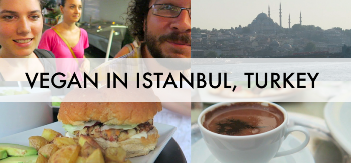 Istanbul, Turkey – Vegan Food & Culture Tour w/Kristin & VeganTravel
