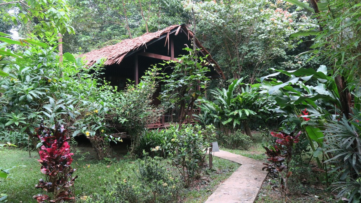 Our Jungle House Thailand