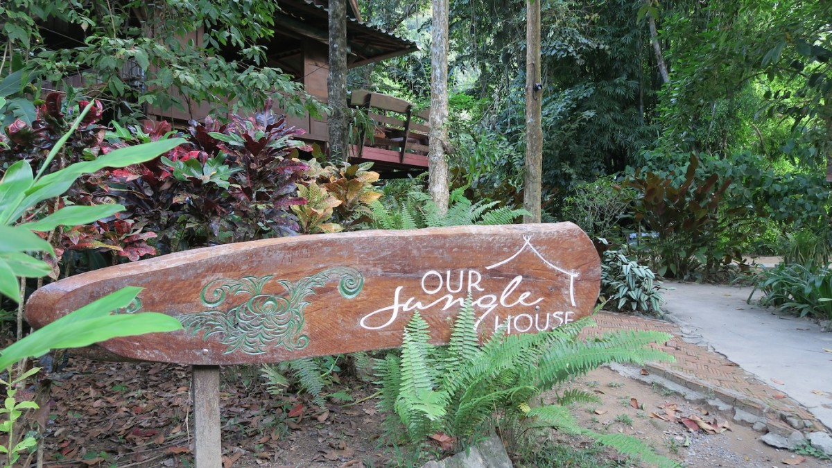 Our Jungle House Thailand